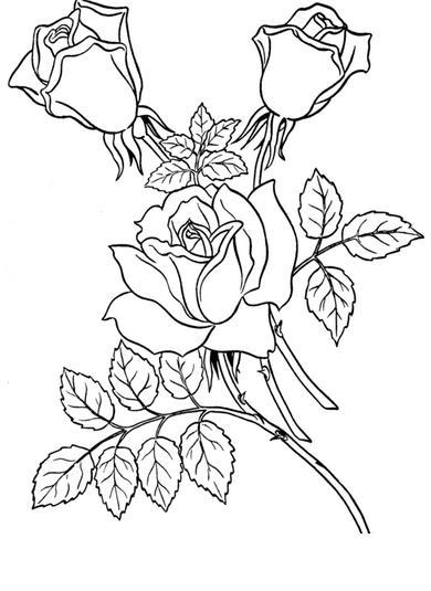 Dibujos de Rosas para Imprimir