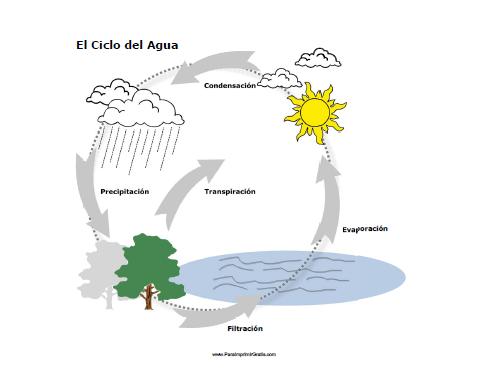 Ciclo Del Agua Para Imprimir Gratis Paraimprimirgratiscom