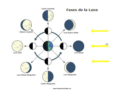 Fases de la Luna - Para Imprimir Gratis - ParaImprimirGratis.
